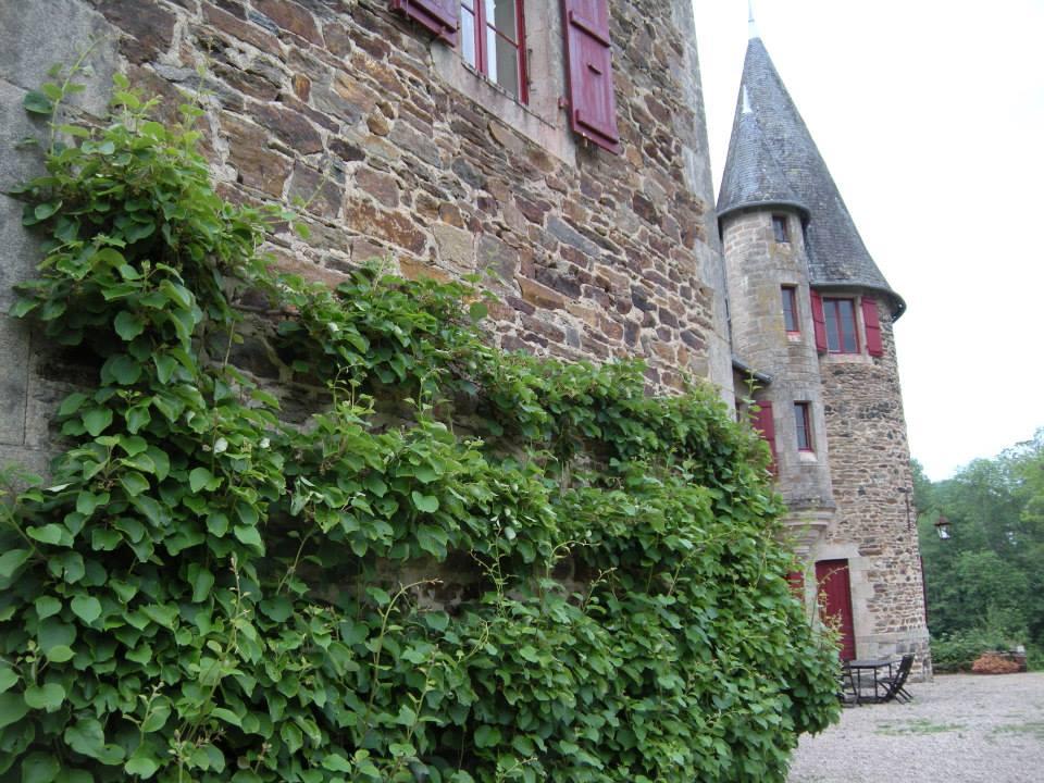 chateau_a_12.jpg