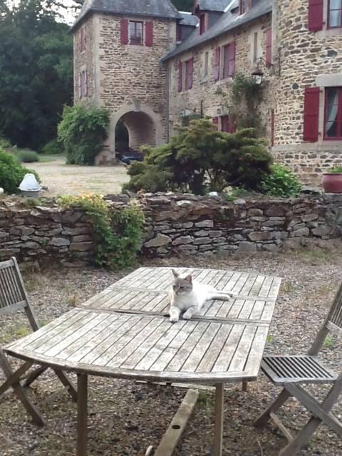chateau_a_8.jpg