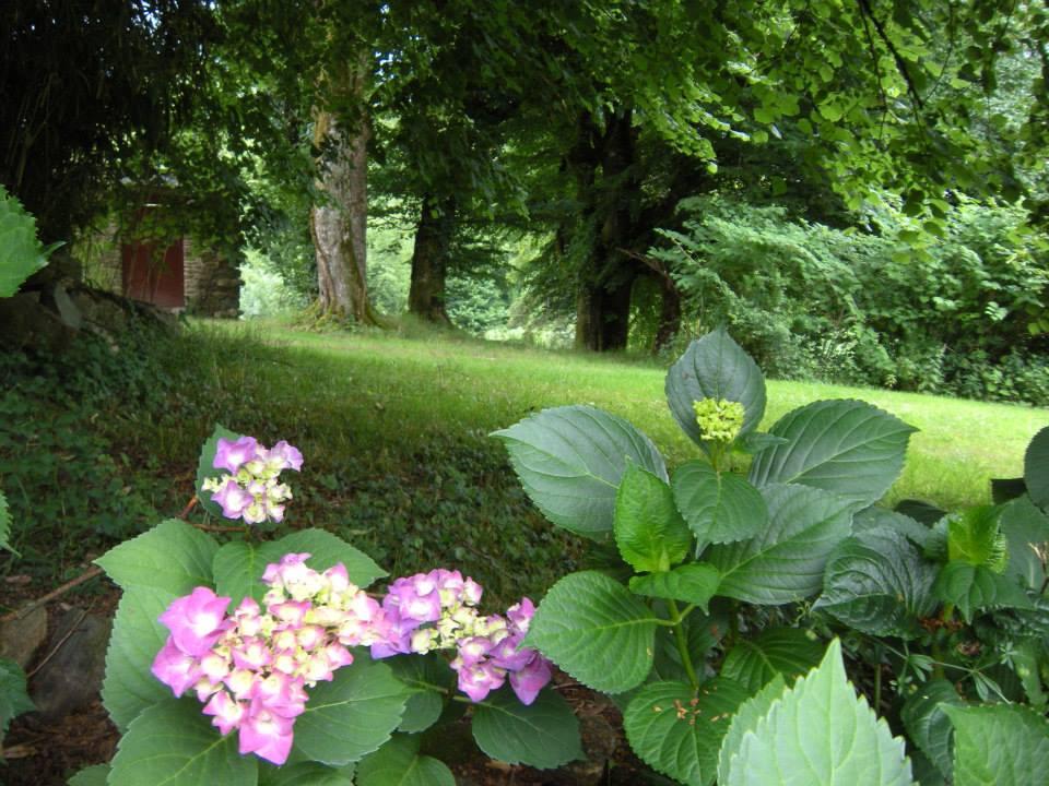 gardens_a_.jpg