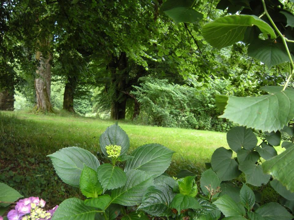 gardens_a_17.jpg
