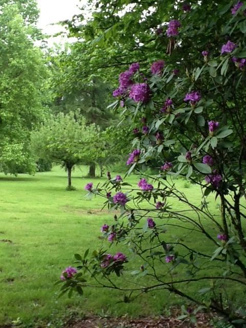 gardens_a_2.jpg