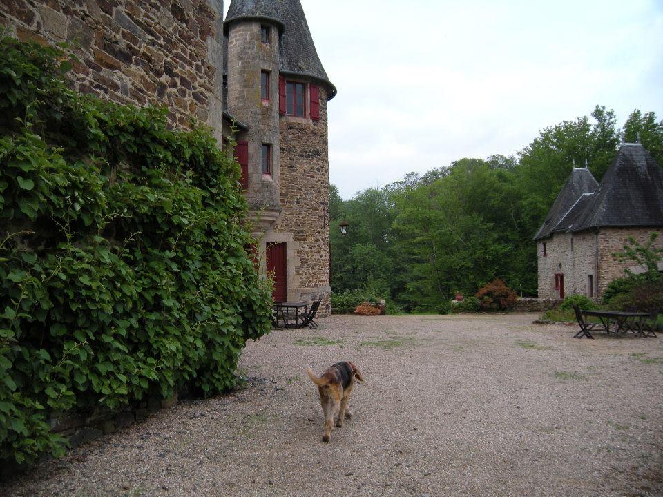 chateau_a_25.jpg